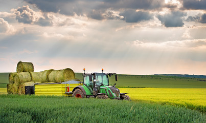 Wall Mural - Green tractor!