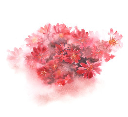 Red floral bouquet with blurred color splash on white background. Hand-painted watercolor illustration