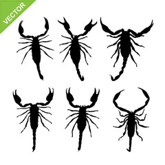 scorpions silhouettes vector