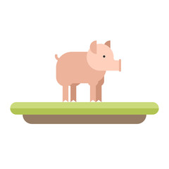Farm animal. Pig. Vector flat style  illustration