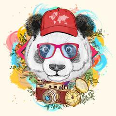 Panda hipster art print hand drawn animal illustration