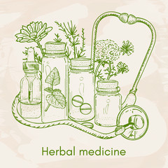 Herbal medicine hand drawn elements vector illustration