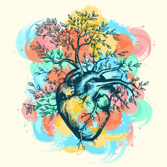 Anatomical human heart from which the tree grows splashes