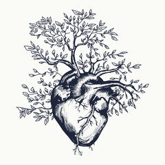 Anatomical human heart from which the tree grows