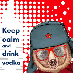 Bear in hat, keep calm and drink vodka poster, alcohol poster