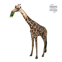 Giraffe polygon vector