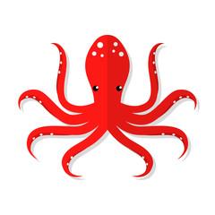 Octopus vector flat illustration isolated on white background. Fresh seafood flat icon.