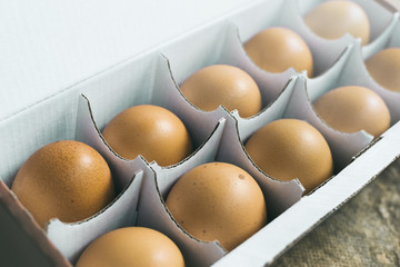 Brown chicken eggs in box