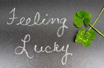Feeling lucky concept sign, 5 five leaf clover, 4 four leaf clover. Luck, Lucky, success, fun, winning, winner.  St Patrick's day symbol of luck.