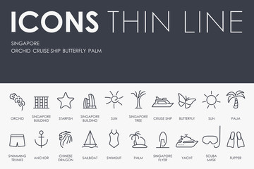 Singapore Thin Line Icons
