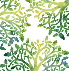 nature background with oak tree branches and leaves
