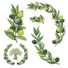 Vector wreath with olive branch and olive tree.