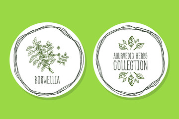 Ayurvedic Herb - Product Label wit Boswellia
