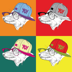 Image Portrait of fox in baseball cap with glasses. Pop art style vector illustration.