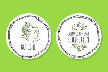 Ayurvedic Herb - Product Label with Guduchi
