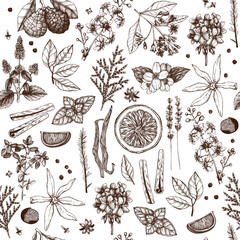 Vector seamless pattern with hand drawn perfumery and cosmetics ingredient sketch. Vintage background with aromatic plants for high-quality cosmetics and scented industry
