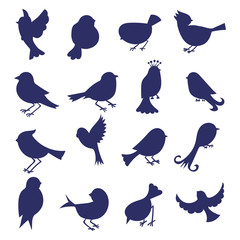 Birds silhouettes isolated on white. Set of hand drawn cartoon birds. Vector icons.