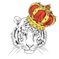 Tiger in the crown. Vector illustration. King. Print for clothes, cards or posters.