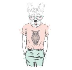 French Bulldog - hipster. Vector illustration. Print.