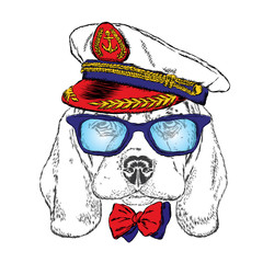 Cute dog in the captain's cap . Sailor. Vector illustration. Design element for printed products or prints on clothes and accessories .