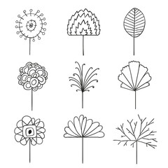 Vector Illustration of Abstract Floral Line Drawing Design Elements