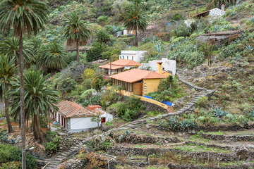 Small hamlets and villages in the canyon Barranco de la Laja on La Gomera. The Barranco is a well watered ravine with barrages to irrigation the terraced fields. The gulch is situated on the west side