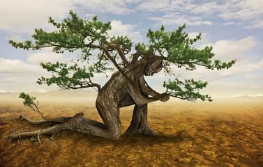 Tree in prayer