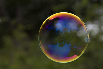 Large soap bubble reflecting outdoor park scene from San Francisco Golden Gate Park