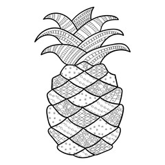 Pineapple adult coloring page. Isolated Vector illustration for coloring book. Hand drawn Black outline, white background.