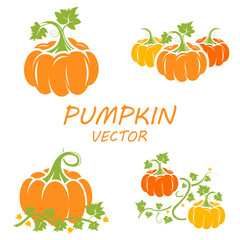 Vector flat pumpkin icons set