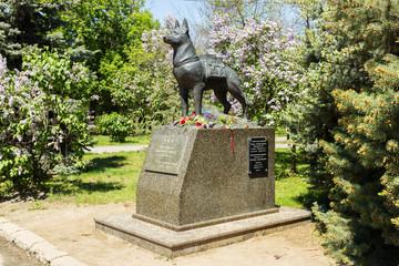 Памятник  немецкой овчарке, подрывнику танков. Волгоград