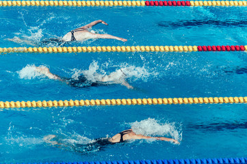 Butterfly stroke swimming race