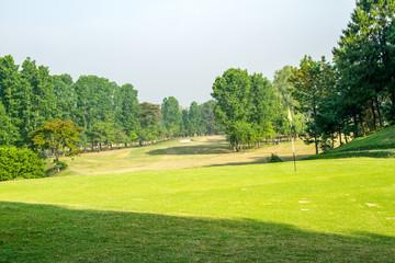 Keuken foto achterwand Lime groen Green Field Playground