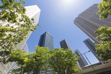新宿高層ビル街 快晴 青空 新緑 緑 春 5月 超広角 太陽 フレア