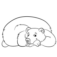 Coloring pages. Wild animals. Kind smiling bear.