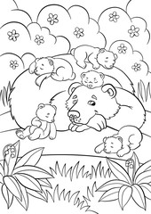 Coloring pages. Wild animals. Kind bear looks at little cute baby bears.