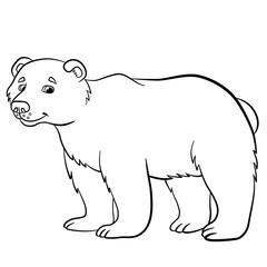 Coloring pages. Wild animals. Cute bear smiles.