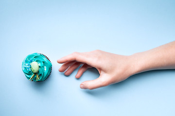 Delicious cupcake on a blue background