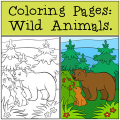 Coloring Pages: Wild Animals. Daddy bear with his little cute baby bear look at the raspberry.