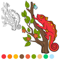 Coloring page. Color me: chameleon. Little cute red chameleon looks at the fly.