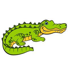 Little cute alligator smiles.