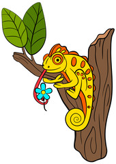 Cartoon animals for kids. Little cute chameleon sits on the tree branch.