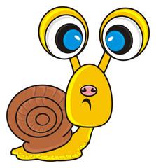hide, peek, hang around, look, pop-eyed, sad, snail, house, crawling, slow, shell, slug, cartoon, isolated, background, white, animal, shellfish
