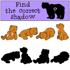 Children games: Find the correct shadow. Little cute baby bears.