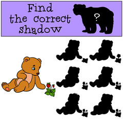 Children games: Find the correct shadow. Little cute baby bear.