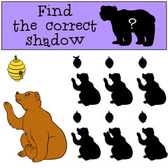 Children games: Find the correct shadow. Cute bear looks at the beehive.