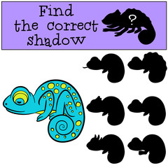 Children games: Find the correct shadow. Little cute blue chameleon sleeps.