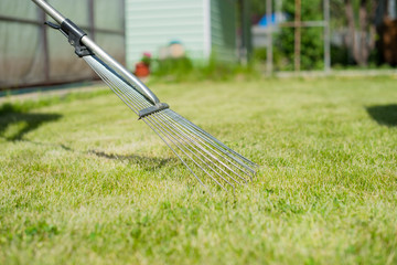 On the green lawn rake collect grass clippings