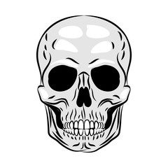 Human skull icon. Vector illustration.