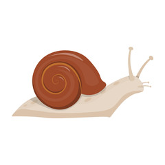 Cute snail cartoon vector illustration.